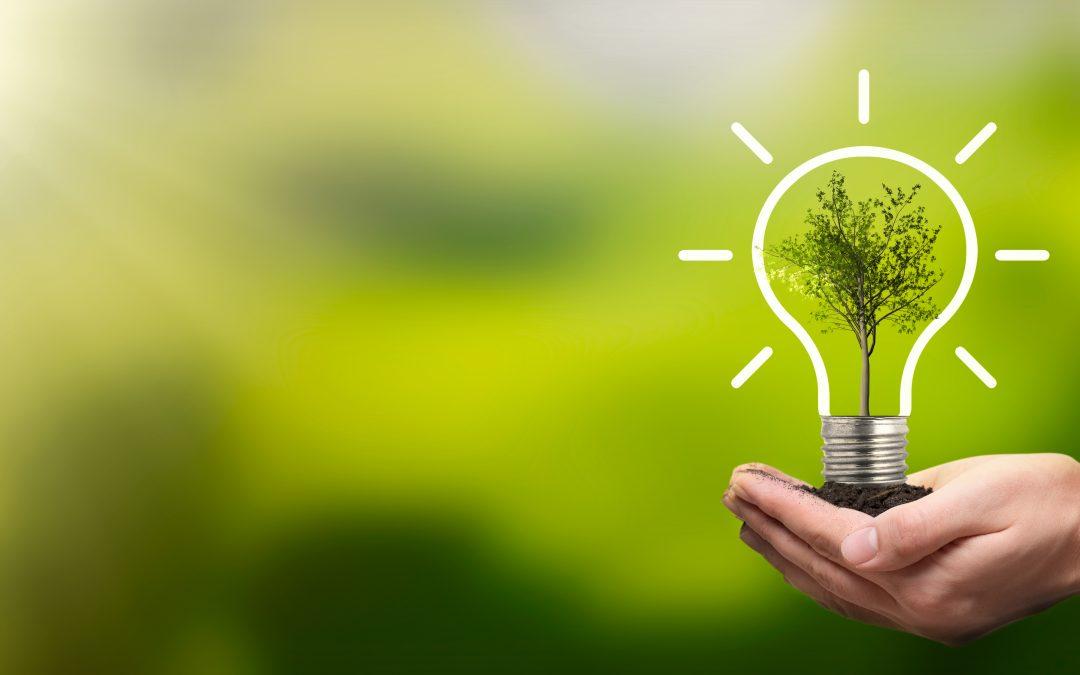 MEMBER NEWS: IEMA Environmental Sustainability Skills from April 2021